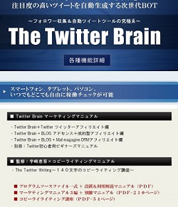 twitterbrain250